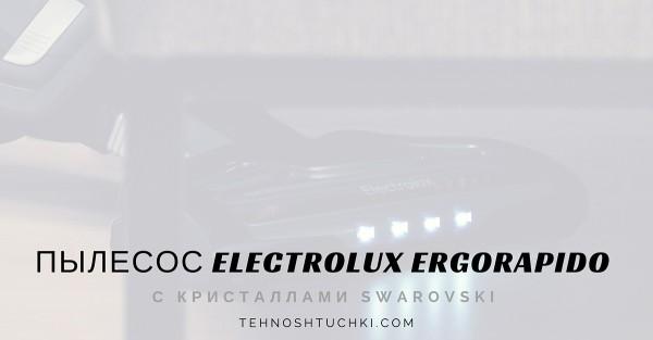 Пылесос Electrolux Ergorapido